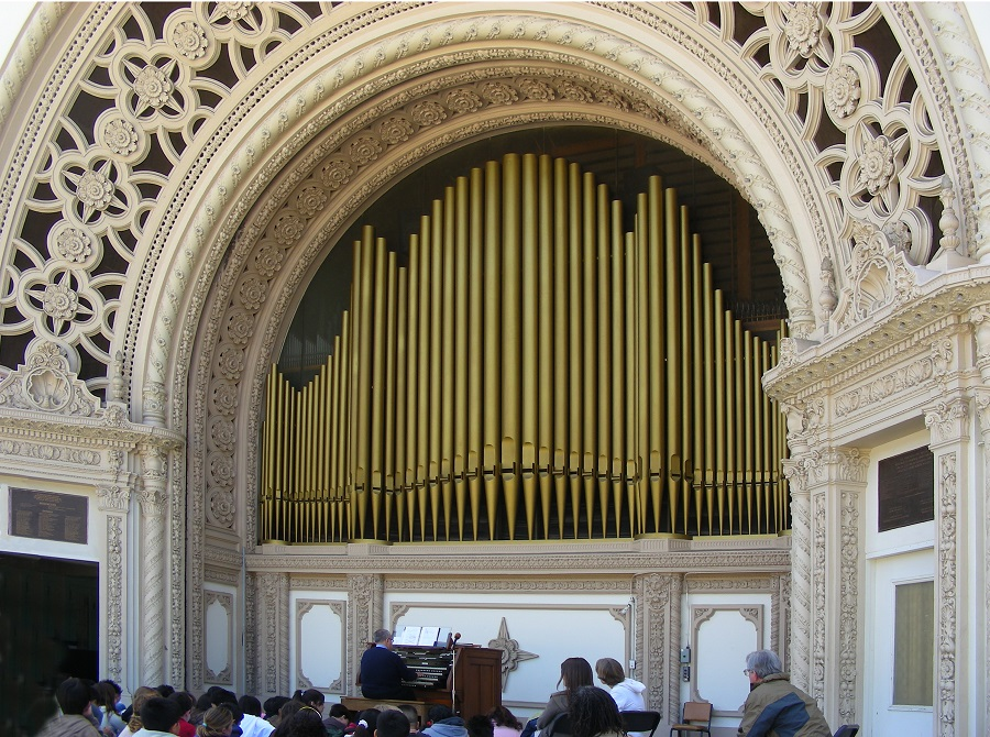 close-up-organ