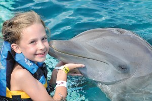 DOLPHIN DISCOVERY ADQUIERE GULF WORLD