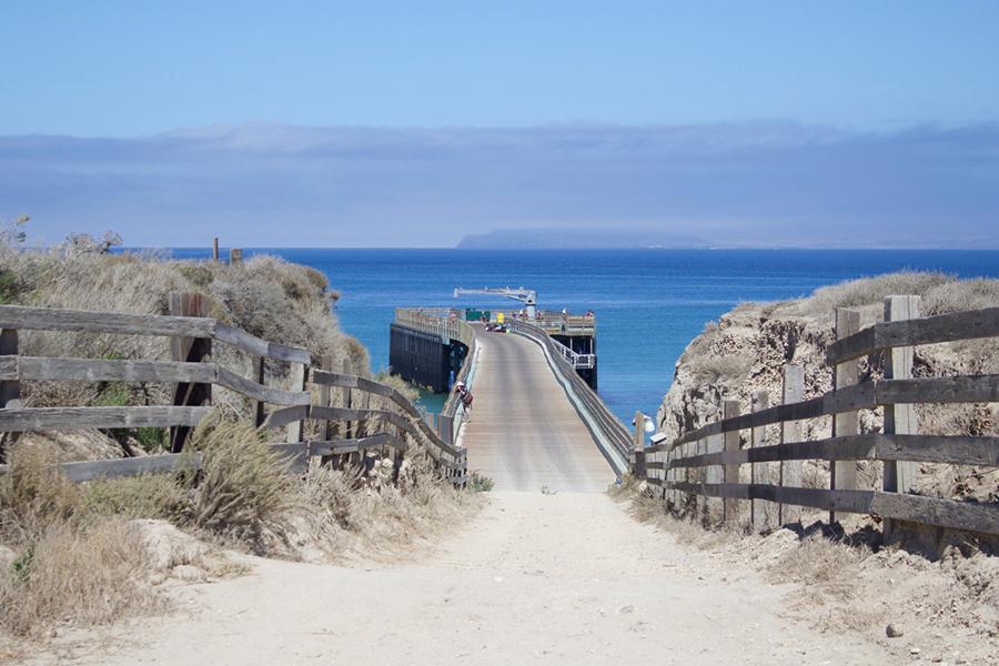 california us traveler 2